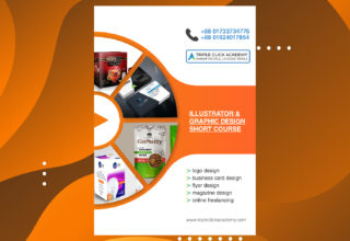 01 Professional Illustrator & Graphics Design Course