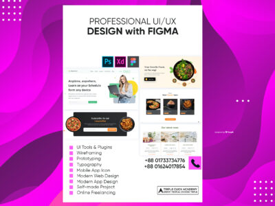 02 Professional UI/UX Design with Figma